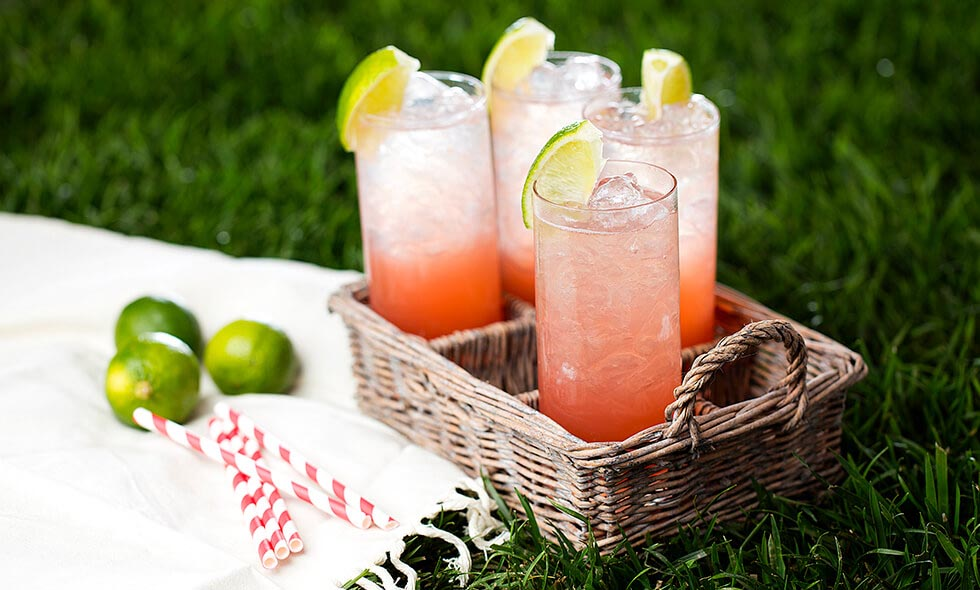 paloma rosa cocktail photo in landscape